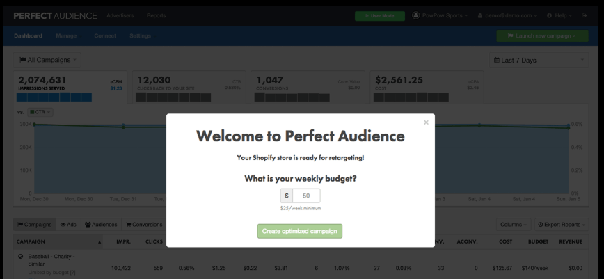 Perfect Audience dashboard